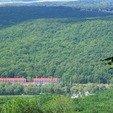 фото Санаторий Теплица Закарпатье. Карпатский лес