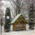 фото Санаторий Хмельник профсоюзный. Парк зимой