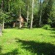 фото Санаторий Березовый гай. Корпус в лесу