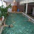 фото Радоновые ванны