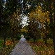 фото санаторий молдова в трускавце.парк