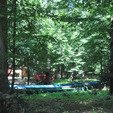 фото курортный отель лесная песня. качели в лесу