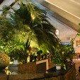 фото санаторий южный трускавец. летний сад