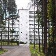 фото Отель Три сына и дочка 5* Сходница. Выглядывает с леса отель