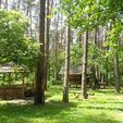 Санаторій «Пролісок» Волинь Фото №17