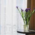 фото отель алькор. Полулюкс. ваза