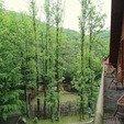 фото Отель Воеводино Закарпатье. Номер Люкс.Балкон