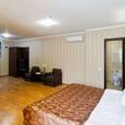 фото Санатория «Лесная песня» Трускавец. Номер 1-комнатные Апартаменты. Кровать