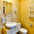 фото Санатория «Лесная песня» Трускавец. Номер 1-комнатные Апартаменты. Туалет